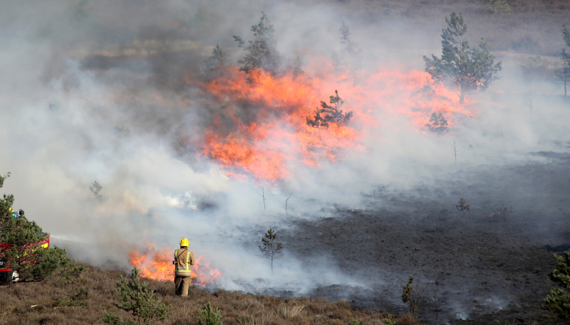 Firefighters tackle a huge heath fire near St Catherine's Hill, Christchurch in 2015