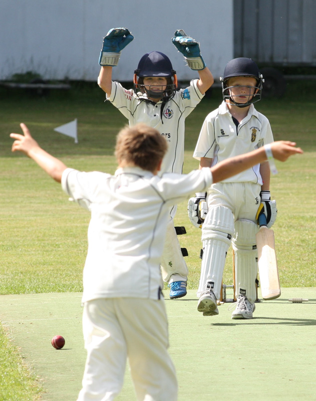Action from a Dorset Youth Cricket U9's cup final.